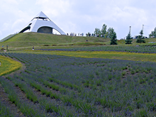 北西の丘展望台